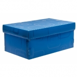 Caixa Organizadora Mini / Sapato - Dello